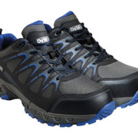 Darlington Safety Trainers